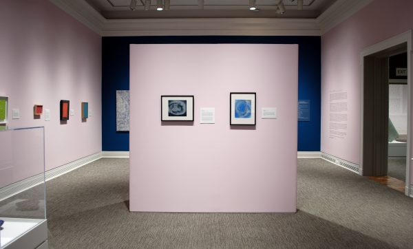 a museum gallery with a freestanding pink wall showing two paintings. The other walls are pink and blue and show other paintings.