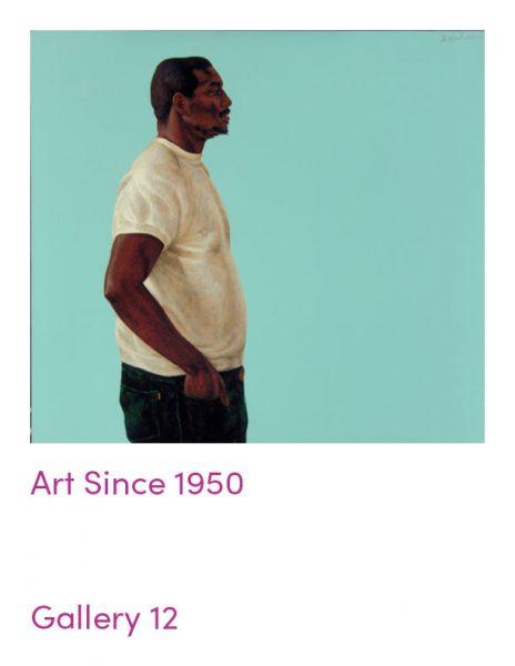 gallery 12 object guide: Art Since 1950